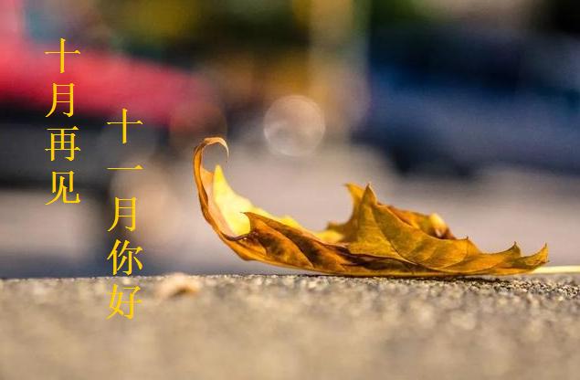 十月再见十一月你好早安唯美句子大全