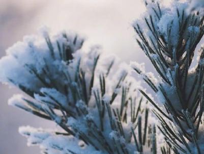 下雪天微信说说配图 晒雪景的心情说说带图片
