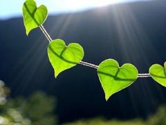 关于爱情很精辟很有哲理的一句话说说 既现实又有道理的爱情说说大全