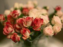 15条爱情说说我的心里话 爱情中最真实的感受说说配图