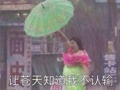 雨好大啊,像杉菜离开道明寺那天那么大