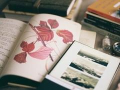 有点伤感的爱情说说带图片 失去一个人后是什么感觉