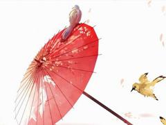 唯美古风中国风句子文字控喜欢 唯美的句子